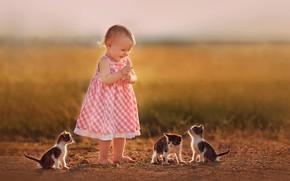 Picture joy, girl, kittens, baby, bokeh