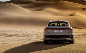 Picture Audi, rear view, crossover, E-Tron, 2019, electrocreaser