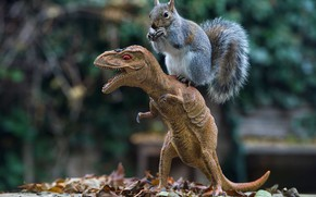 Picture look, face, nature, pose, foliage, toy, legs, dinosaur, protein, mouth, toy, bokeh, on the back, …
