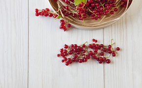 Picture berries, basket, red, currants