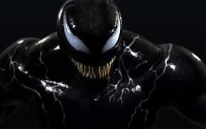 Picture Venom, Movie, HD wallpaper