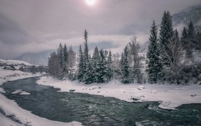 Picture winter, the sky, water, snow, trees, mountains, nature, river