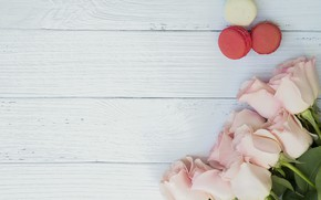 Picture roses, bouquet, macaroon