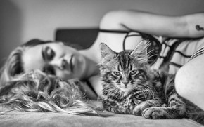 Picture cat, look, girl, black and white, monochrome, cat