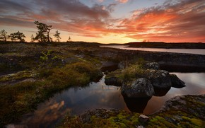 Picture the sky, trees, sunset, river, stones, shore, the evening