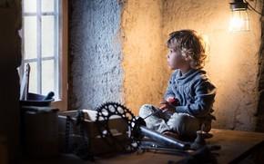 Picture boy, window, tool, workshop, curls