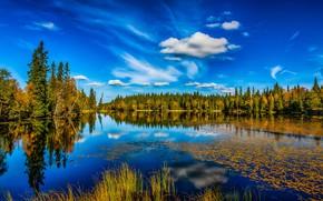 Wallpaper autumn, forest, the sky, lake, reflection, Norway, Lønnsjøen