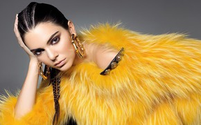 Picture look, girl, style, makeup, brunette, fur, Kendall Jenner