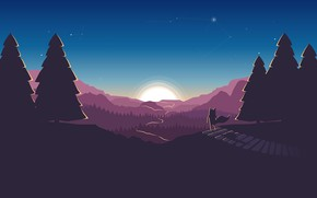 Picture road, forest, the sky, the sun, stars, tree, Fox
