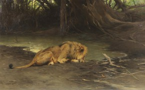 Picture German painter, Friedrich Wilhelm Kunert, German painter, Friedrich Wilhelm Kuhnert, Lion at the watering hole, ...