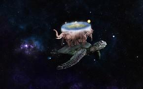 Picture Discworld, Терри Пратчетт, Великий А'Туин, Terry Pratchett, Плоский Мир, by Pyrus-acerba