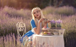 Picture girl, flowers, tale, Alice, image, cakes