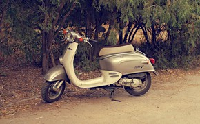 Picture honda, silver, Day, Honda Giorno AF 24