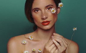Picture girl, portrait, chamomile