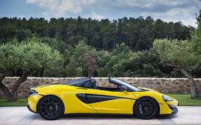 Picture McLaren, Spider, 570S