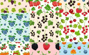 Picture leaves, berries, background, texture