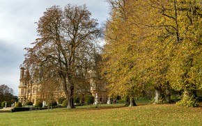 Picture Autumn, England, Nature, Waddesdon Manor, Trees, Park, photo, Leaves