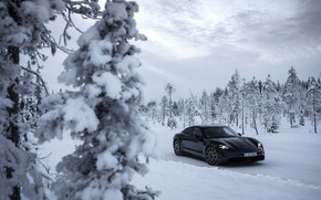 Picture snow, trees, black, Porsche, ate, 2020, Taycan, Taycan 4S