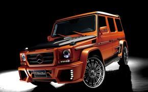Picture Orange, Tuning, G-Class, W463, Black Bison Edition, Mercedes - Benz