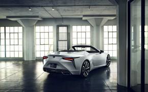 Picture white, Lexus, back, convertible, 2019, LC Convertible Concept