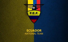 Picture wallpaper, sport, logo, football, Ecuador, National team