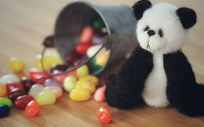Picture childhood, table, background, black and white, toy, bear, candy, bear, Panda, bucket, floor, bear, sitting, …