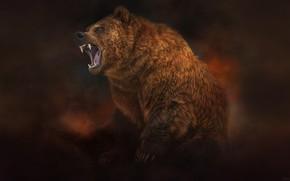 Picture Style, Bear, Beast, Art, Art, Brown, Style, Beast, Illustration, Brown, Animal, Bear, Animal, Illustration, Roar, …
