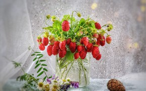 Picture summer, drops, flowers, berries, mood, strawberries, Bank, still life, bump, light background, a bunch, summer, …