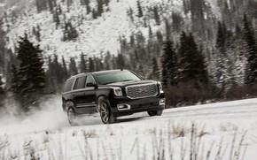 Picture movement, 2018, GMC, SUV, Denali, Yukon