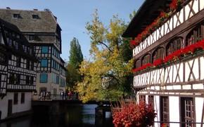 Picture autumn, flowers, bridge, river, France, home, channel, Strasbourg