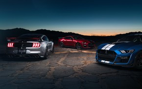 Picture sunset, Mustang, Ford, Shelby, GT500, the evening, twilight, 2019