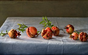 Picture table, background, grain, fruit, still life, on the branch, grenades, tablecloth, composition, pomegranate