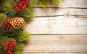 Picture decoration, berries, Christmas, New year, new year, Christmas, bumps, wood, decoration, fir tree, fir-tree branches