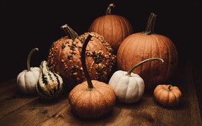 Picture the dark background, table, Board, harvest, pumpkin, different