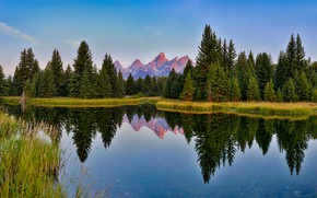 Picture forest, mountains, reflection, tops, USA, pond, blue sky, Grand Teton, natioanlly Park