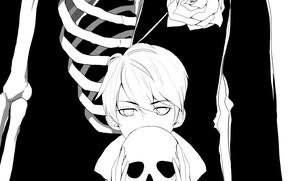 Picture rose, skull, art, skeleton, guy, monochrome, by reinebeamme