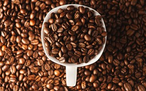 Picture coffee, mug, placer, a lot, coffee beans, full
