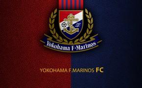 Picture wallpaper, sport, logo, football, Yokohama Marinos