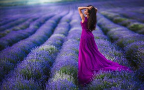 Picture field, girl, pose, mood, dress, lavender, Alex Lett