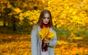 Picture autumn, leaves, girl, yellow, Frolenko Maxim