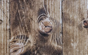 Picture texture, Board, wood