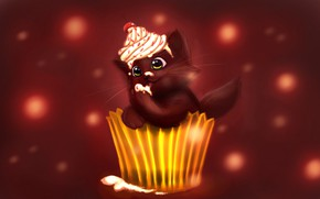 Picture kitty, cute, cupcake