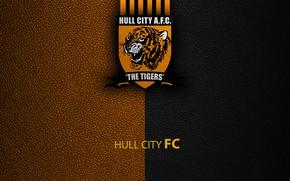 Picture wallpaper, sport, logo, football, English Premier League, Hull City