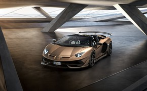 Picture machine, light, lights, Lamborghini, spoiler, sports car, drives, roadster, Aventador, SVJ