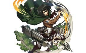 Picture weapons, Shingeki No Kyojin, Mikasa Ackerman, Attack of the titans
