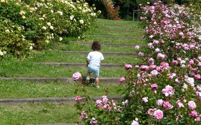 Picture Park, roses, girl