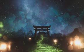 Picture the sky, night, nature, torii