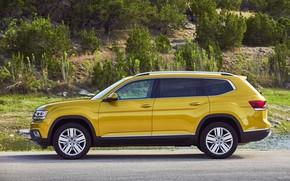 Picture yellow, Volkswagen, Parking, shrub, Atlas, 2017