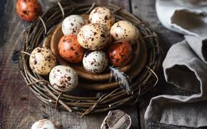 Picture eggs, Easter, socket, Easter
