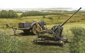 Picture - Aircraft cannon, anti-aircraft gun, 2.0 cm FlaK 30/38, зенитчик